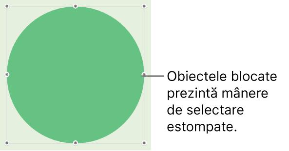 Un obiect blocat cu mânere de selecție estompate.