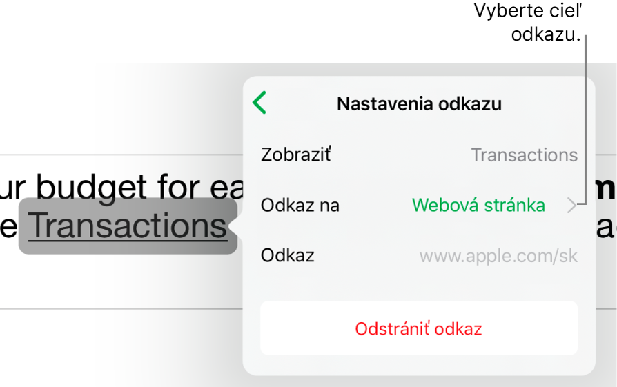 Ovládacie prvky Nastavenia odkazu spoľami Zobraziť, Odkaz na (nastavené na webovú stránku) aOdkaz. Tlačidlo Odstrániť odkaz je vspodnej časti.