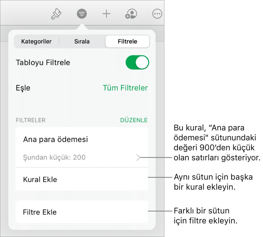 Yeni filtreleme kuralları ekleme veya var olanları düzenleme denetimleri.