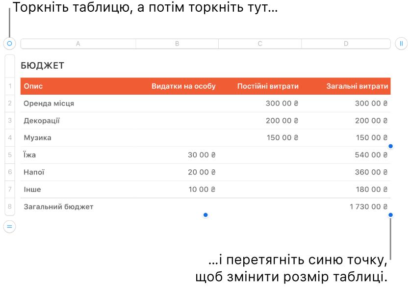 Вибрана таблиця із синіми точками, які призначені для редагування розміру.