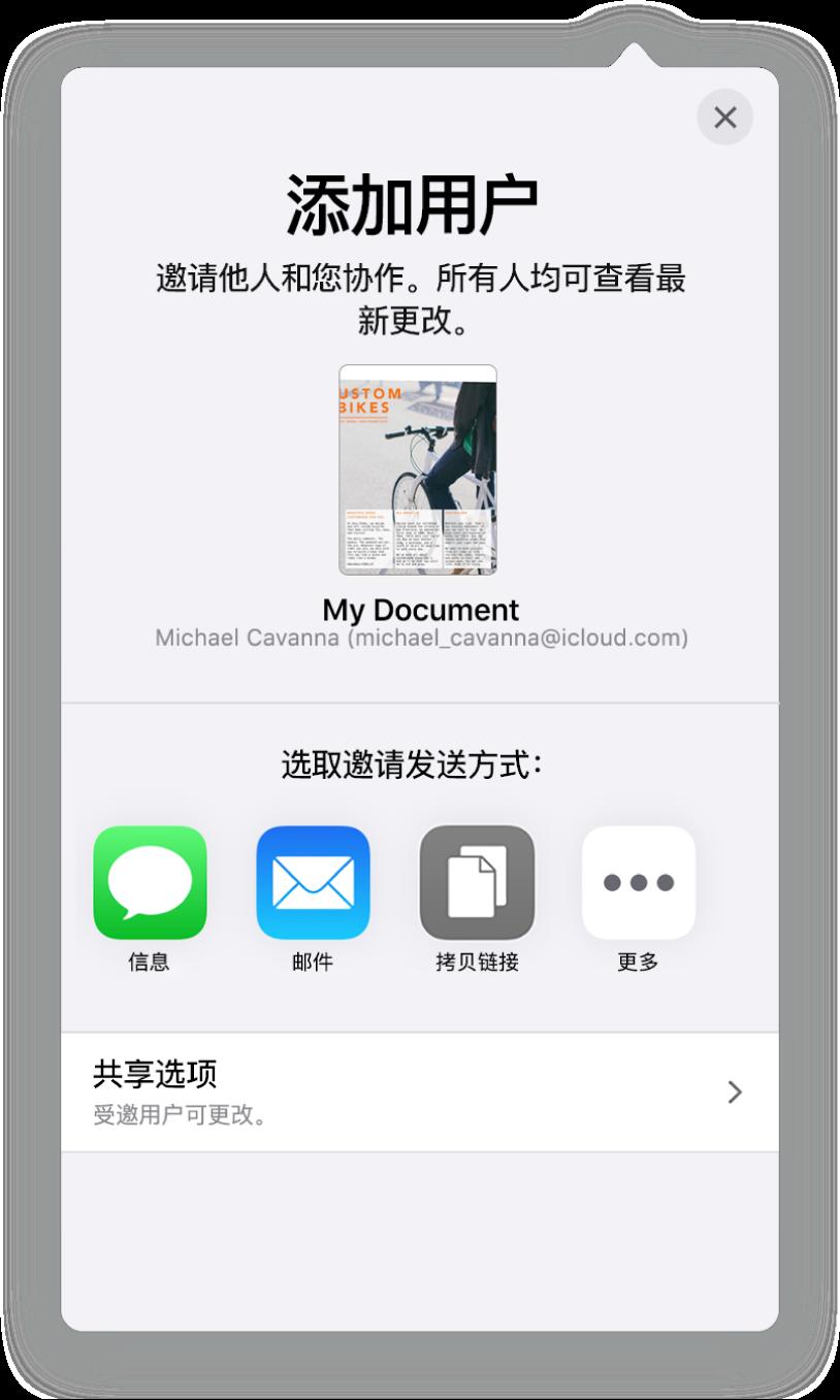 """""""添加用户""""屏幕,显示要共享电子表格的图像。其下方是邀请发送方式的按钮,包括""""邮件""""和""""拷贝链接""""等。底部是""""共享选项""""按钮。"""
