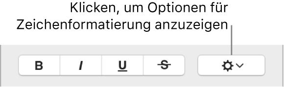 """Das Markierungsfeld """"Erweiterte Optionen"""" neben den Tasten """"Fett"""", """"Kursiv"""" und """"Unterstrichen"""""""