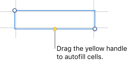 A selected cell with a yellow handle you can drag to auto fill cells.