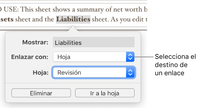 """El editor de enlaces con un campo Mostrar, el menú desplegable """"Enlazar a"""" (con la opción Hoja seleccionada), y el menú desplegableHoja (donde la hoja llamada Resumen está seleccionada). En la parte inferior de la ventana emergente se encuentran las opciones Eliminar e Ir a."""