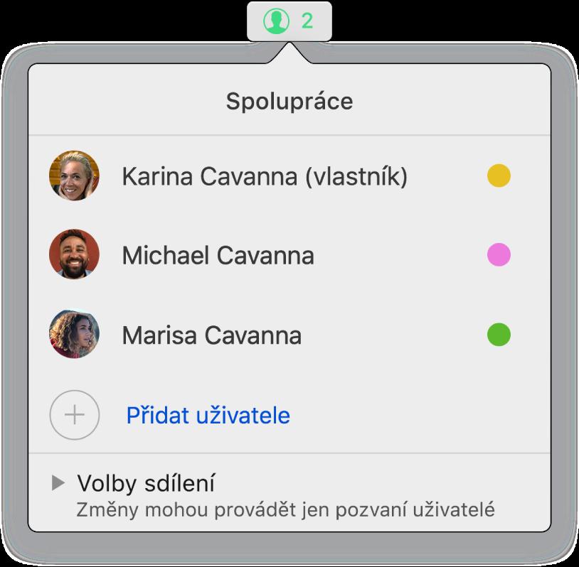 Nabídka Spolupráce se zobrazenými jmény uživatelů, kteří na prezentaci spolupracují; pod jmény se zobrazují volby sdílení