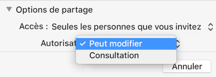 Section Options de partage de la zone de dialogue de collaboration avec le menu local Autorisation ouvert et l'option « Peut modifier » sélectionnée.