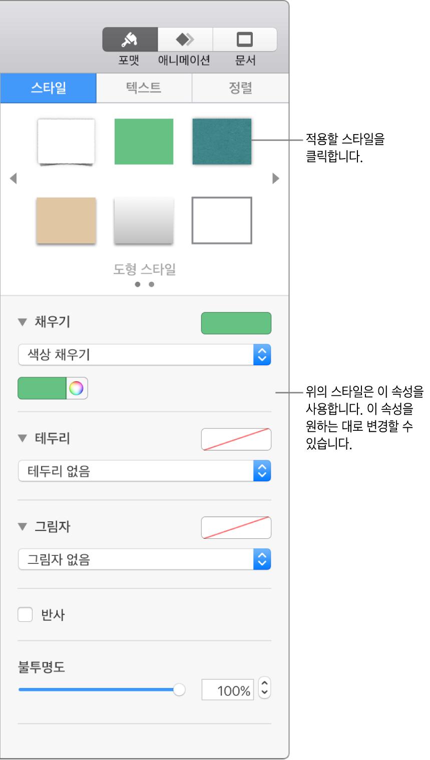 사이드바의 포맷 섹션에 있는 도형 스타일 및 옵션.