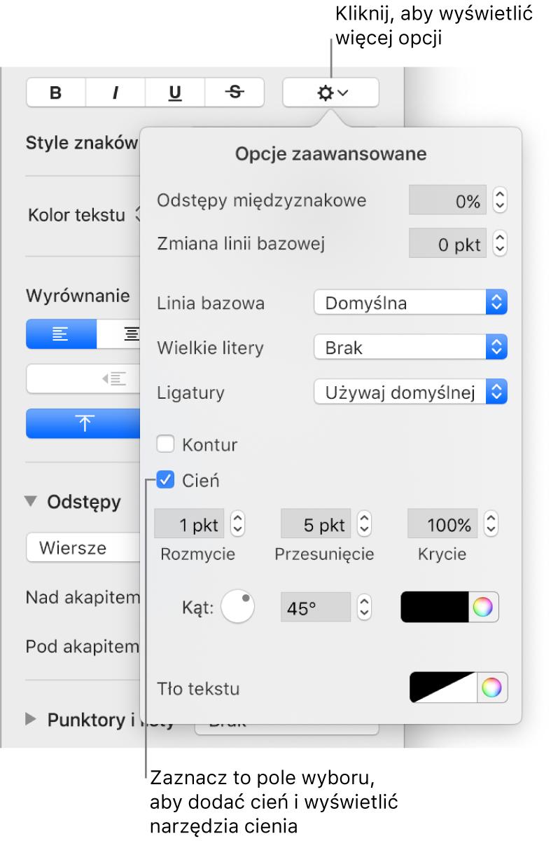 Otwarte menu opcji zaawansowanych, zawierające zaznaczone pole wyboru Cień oraz narzędzia ustawiania rozmycia, przesunięcia, krycia, kąta ikoloru.