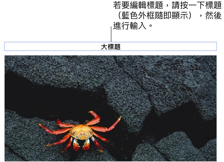 暫存區標題,「標題」顯示在照片下方,藍色外框環繞標題欄位顯示已選取。