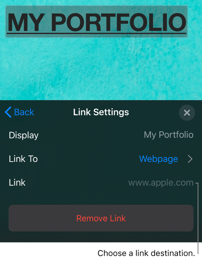 The Link Settings controls with fields for Display, Link To (Webpage is selected), and Link. The Remove Link button is at the bottom.