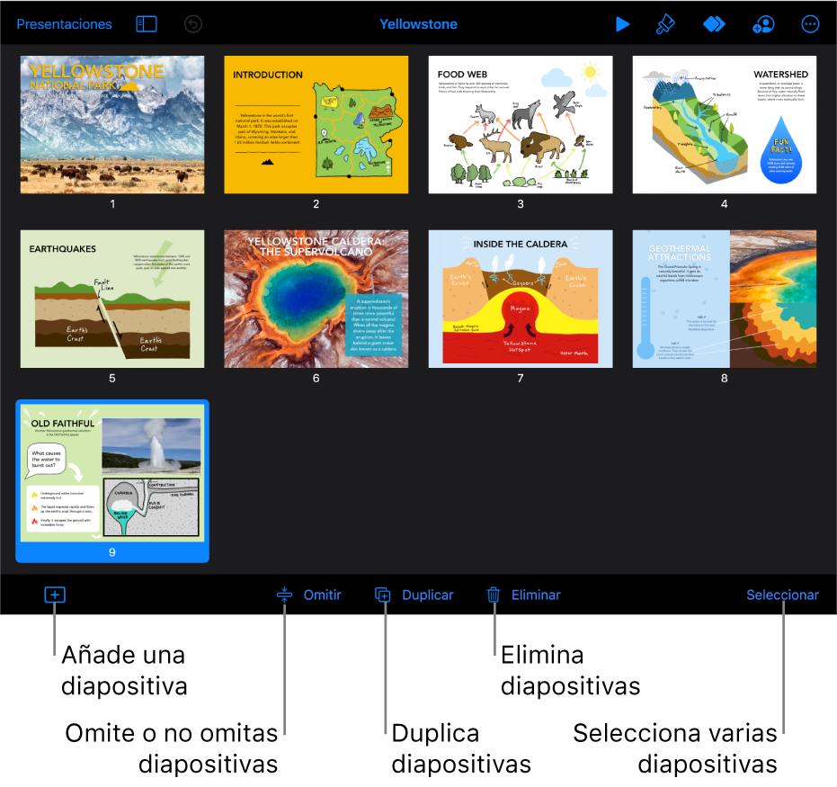 Vista de mesa luminosa con botones en la parte inferior de la pantalla para añadir, omitir, duplicar y eliminar diapositivas, y para seleccionar varias diapositivas.