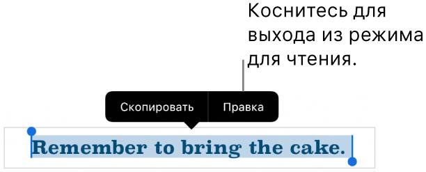Выбрано предложение; над ним отображается контекстное меню скнопками «Скопировать» и«Правка».