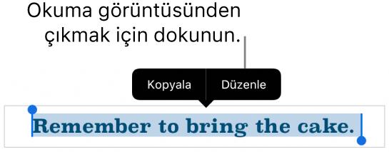 Bir cümle seçilir, üstünde Kopyala ve Düzen düğmeleri ile bağlamsal menü bulunur.