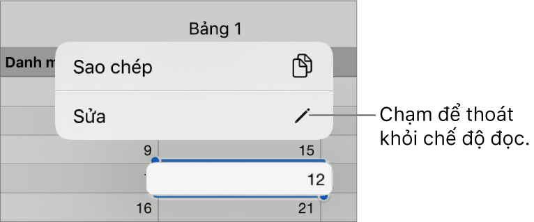 Một ô bảng được chọn và phía trên ô bảng đó là menu với các nút Sao chép và Sửa.