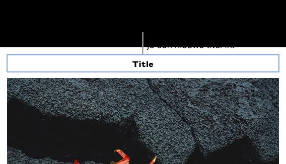 """De plaatsaanduidingstitel, """"Titel"""", verschijnt boven een foto; een blauwe rand rond het titelveld geeft aan dat het geselecteerd is."""