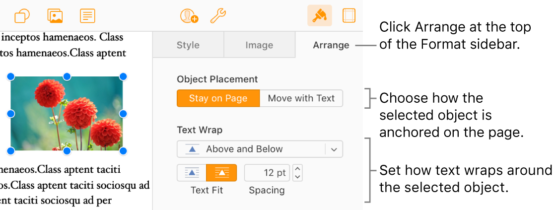 An image is selected in the document body; the Arrange tab of the Format sidebar shows the object is set to Stay on Page with text wrapping above and below the object.
