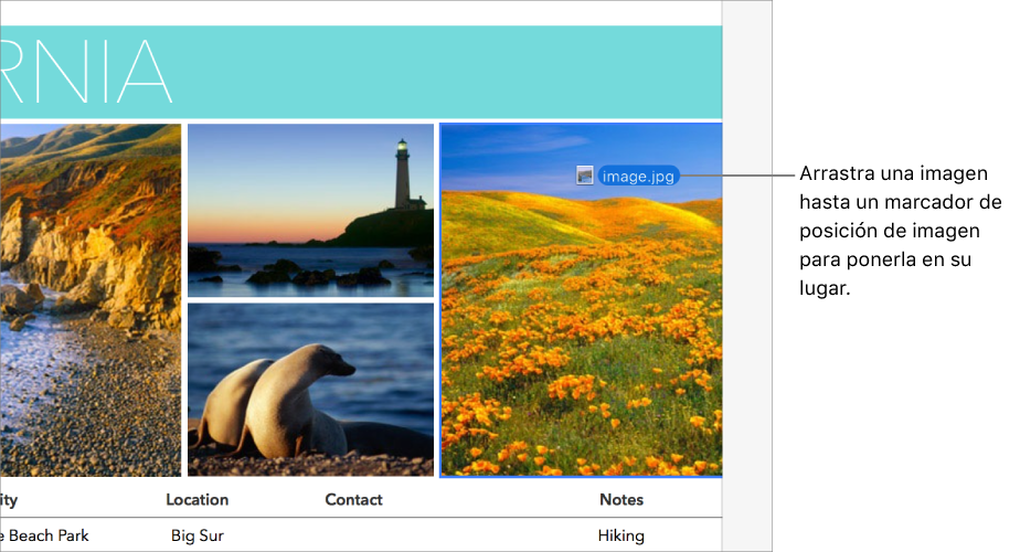 Arrastrando un nuevo archivo de imagen a un marcador de posición de imagen.