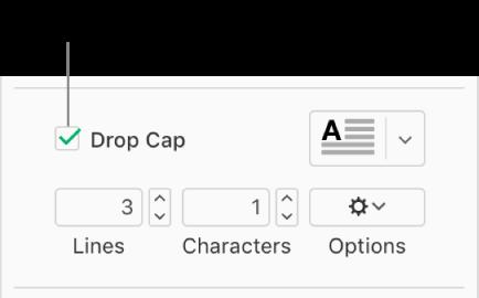 드롭 캡 체크박스가 선택되어 있고 팝업 메뉴가 그 오른쪽에 나타나며, 줄 높이, 문자 수 및 기타 옵션을 설정하는 제어기가 그 아래에 표시됩니다.