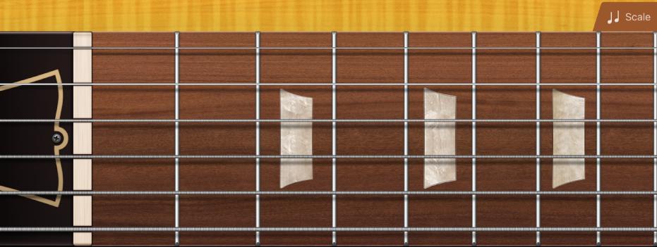 Figure. Guitar fretboard.
