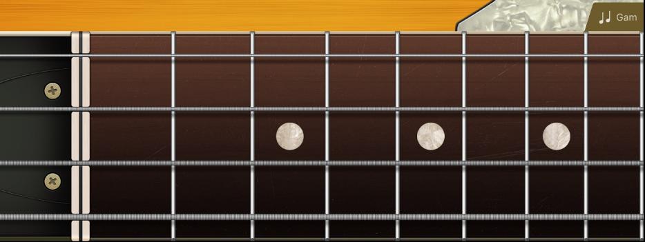 Hình. Mặt phím của ghi-ta bass.