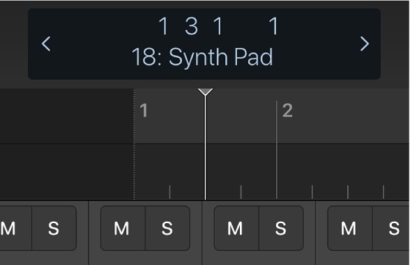 Figure. Ruler and playhead underneath the control bar display.