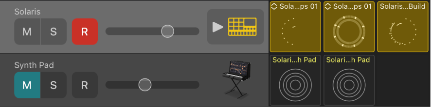 Figure. Track header, showing Mute, Solo, Record, and Volume controls and track icon.