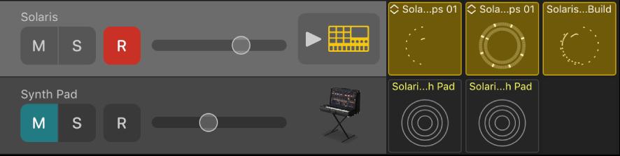 図。「ミュート」、「ソロ」、「録音可能」、「ボリューム」コントロールとトラックアイコンが表示されたトラックヘッダ。