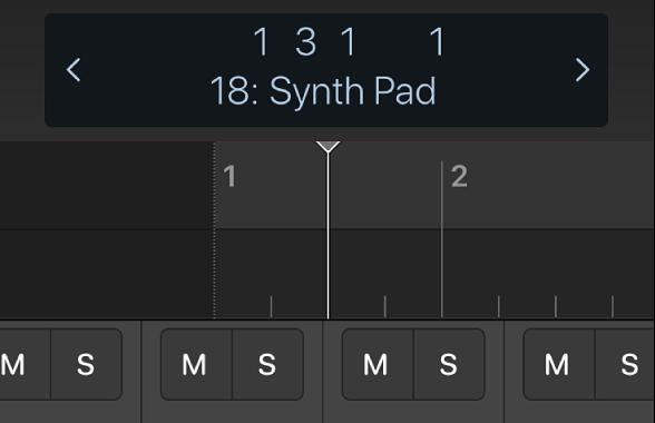 圖表。控制列顯示畫面下方的尺標和播放磁頭。