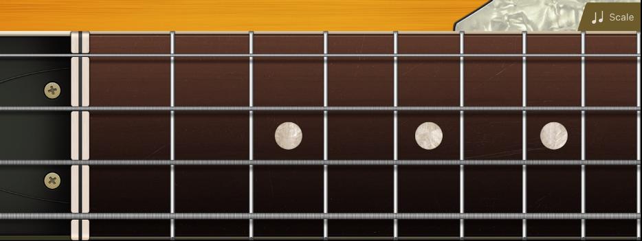 Figure. Bass fretboard.