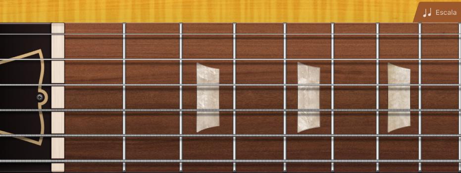 Figura. Braço de guitarra.