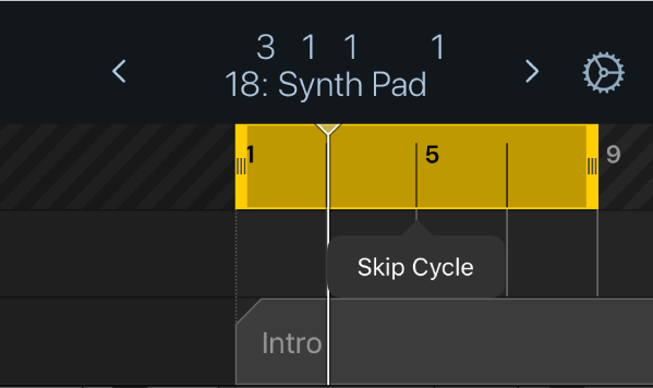 Figure. Showing the Skip Cycle menu option above the yellow cycle area.
