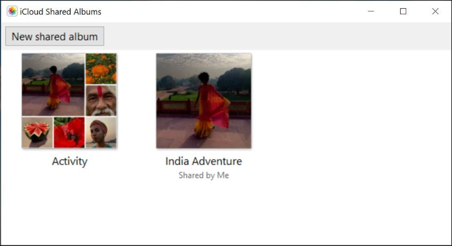 Fenêtre Albums partagés iCloud d'iCloud pour Windows. Deux albums sont visibles: Activité et India Adventure (Excursion en Inde). India Adventure (Excursion en Inde) affiche «Partagé avec moi» sous le titre.