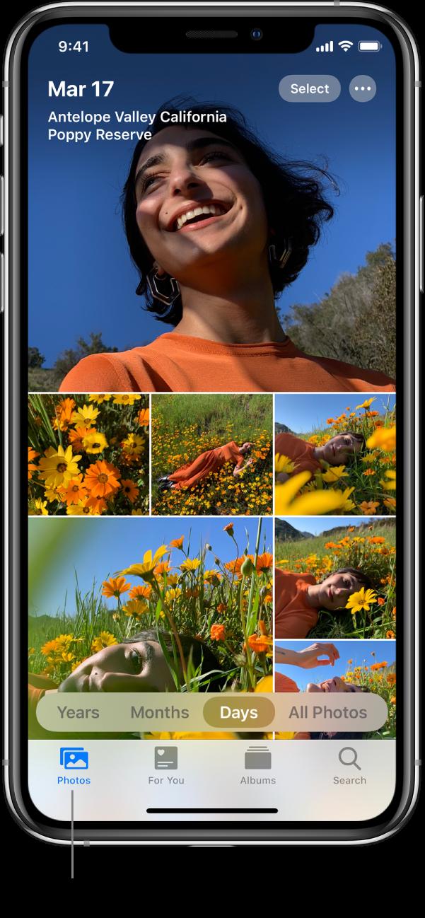 開啟「相片」分頁並選取「日數」檢視模式的 iPhone 的「相片」App。一條指向「相片」分頁的線,以及註明「查看所有已開啟 iCloud 相片裝置的相片和影片。」的標註