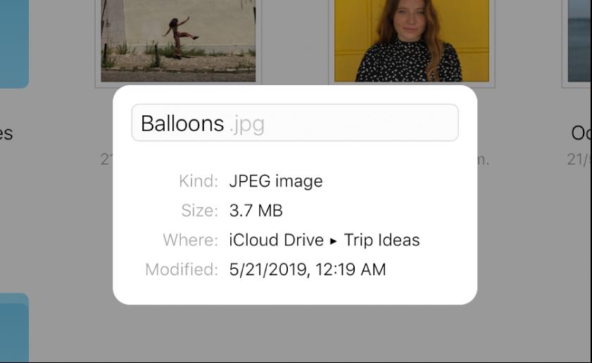 iCloudDrive에 저장된 이미지의 정보 패널. 'Balloons'라는 파일 이름이 편집할 수 있는 상태입니다.