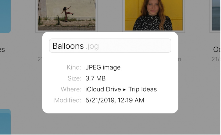 """O painel Informações de uma imagem armazenada no iCloudDrive. O nome de arquivo """"Balões"""" é editável."""
