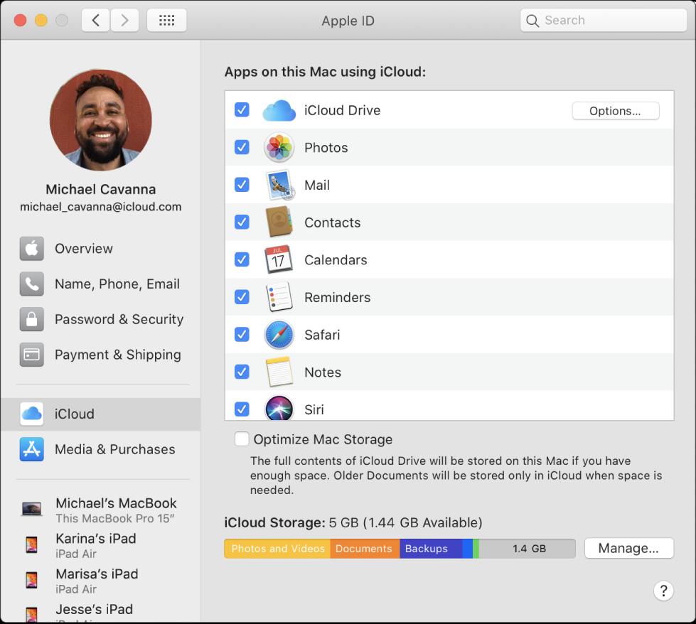 """已选中多项 iCloud 功能的""""系统偏好设置""""窗口。"""