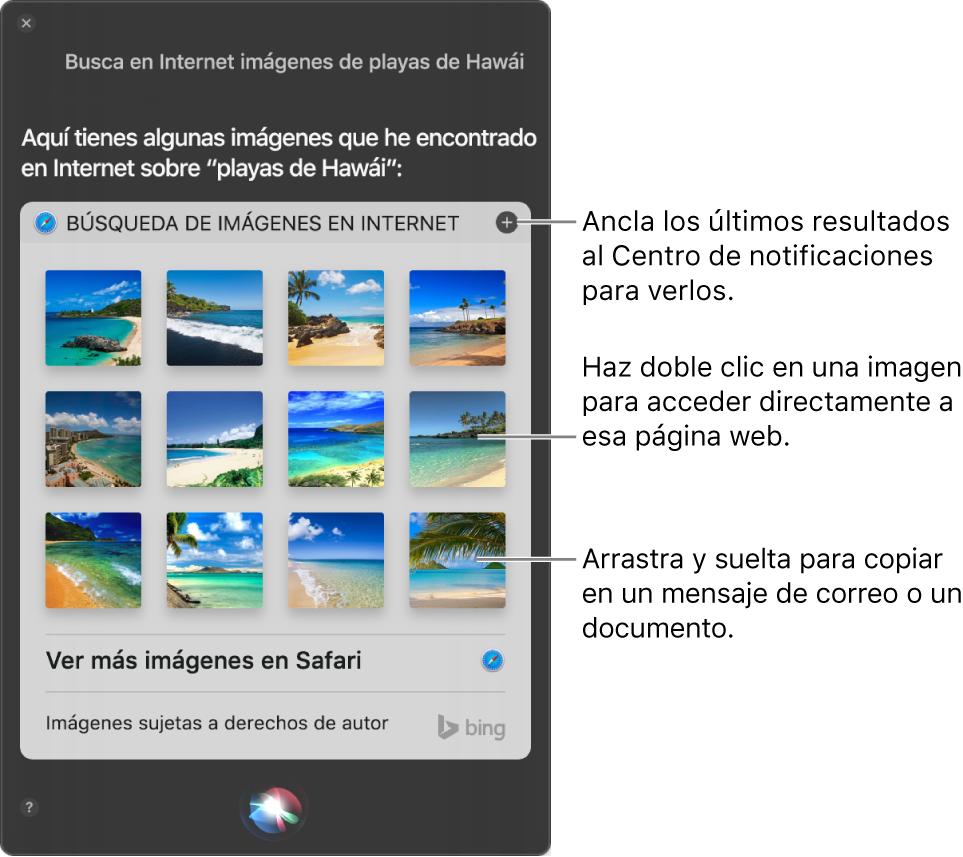 """La ventana de Siri mostrando los resultados de Siri a la petición """"Busca en la web imágenes de playas de Hawái"""". Puedes pinchar los resultados en el centro de notificaciones, hacer doble clic en una imagen para abrir la página web que contiene la imagen o arrastrar una imagen a un correo electrónico o documento, o bien al escritorio."""