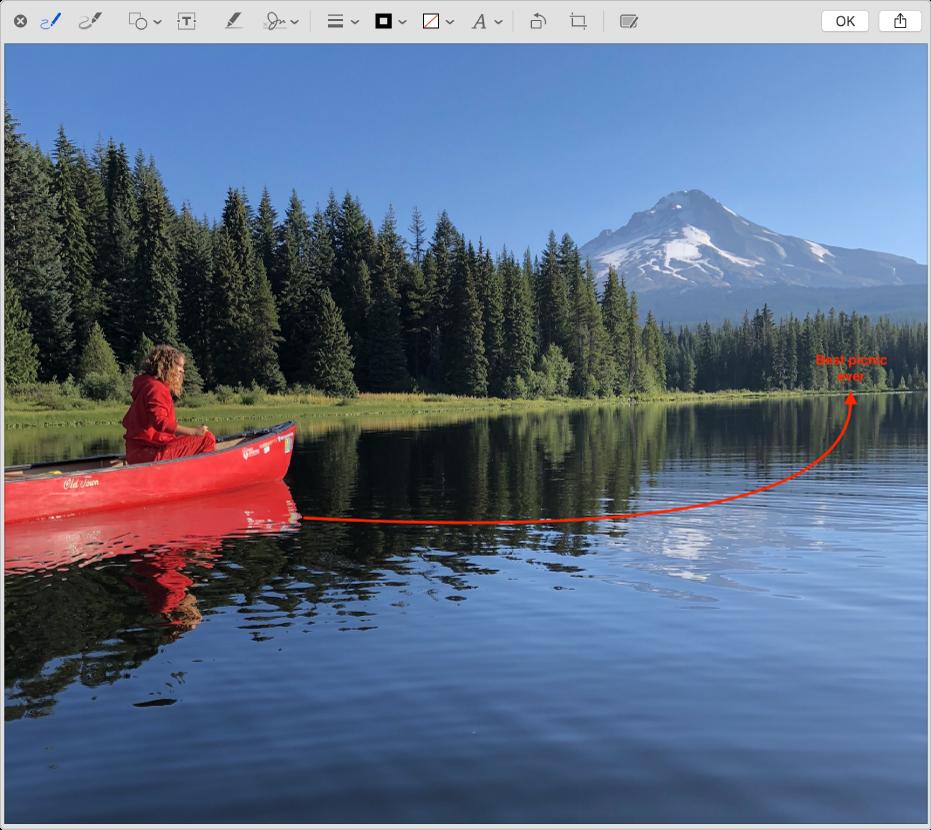 Une image, annotée avec une flèche et du texte, dans la fenêtre des annotations avec les outils d'annotation en haut.