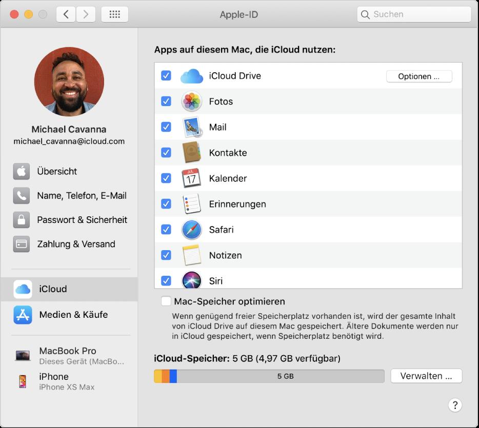 """Systemeinstellung """"Apple-ID"""" mit einer Seitenleiste der verschiedenen Typen von Accountoptionen, die du verwenden kannst, und Einstellungen unter """"iCloud"""" eines vorhandenen Accounts"""