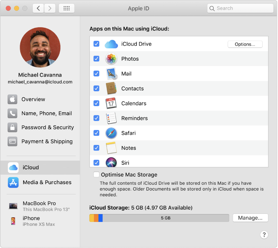 Apple ID preferences showing a sidebar of different types of account options you can use and the iCloud preferences for an existing account.