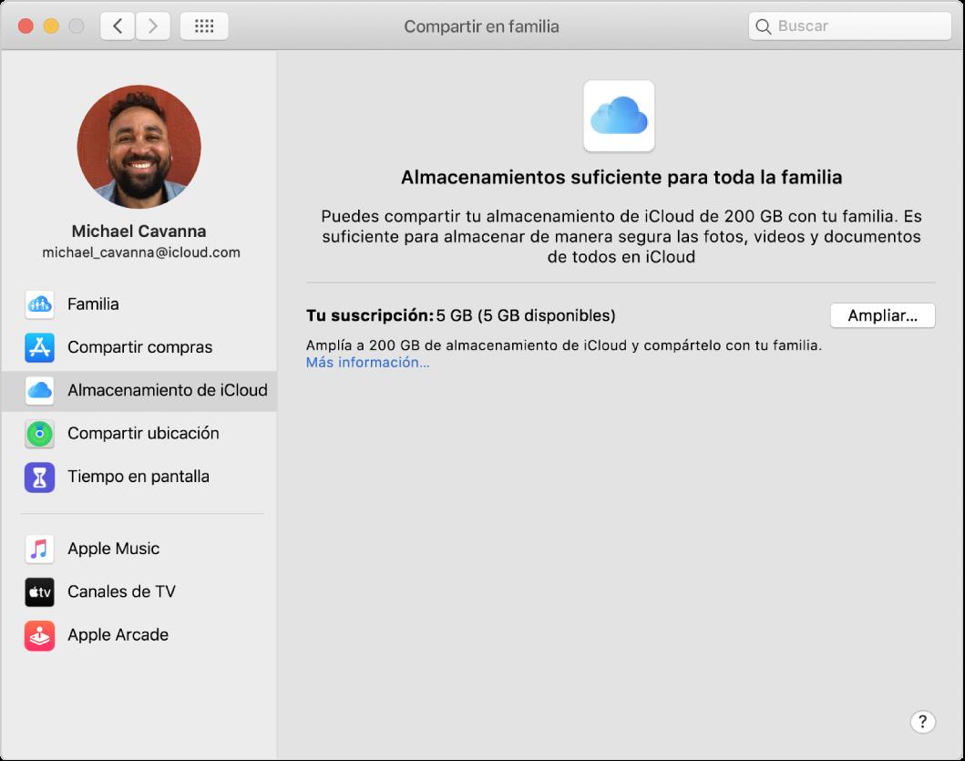 """El panel de preferencias """"Compartir en familia"""" mostrando una barra lateral de distintos tipos de opciones de cuenta que puedes usar y las preferencias de """"Almacenamiento de iCloud"""" de una cuenta existente."""