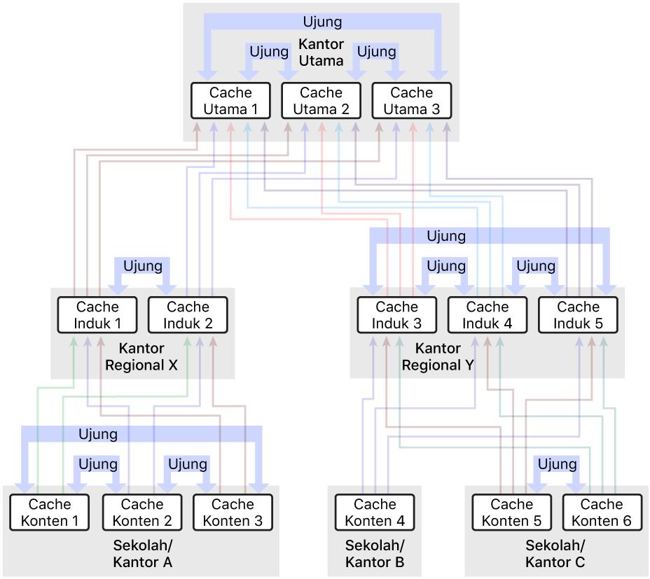 Jaringan dengan beberapa cache konten, diatur ke dalam hierarki tiga tingkat yang memiliki cache konten induk dan induk utama. Cache konten mendefinisikan ujung di tiap tingkat hierarki.