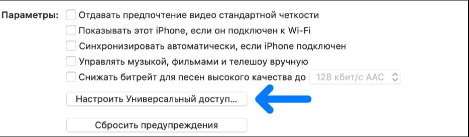 Параметры синхронизации. Выделена кнопка «Настроить Универсальный доступ».