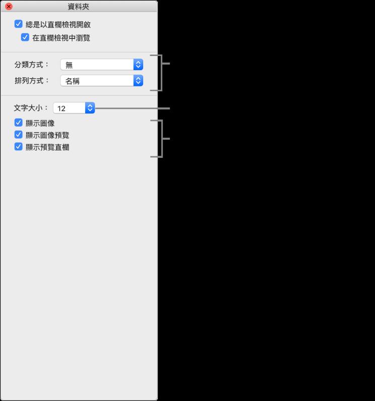 直欄顯示方式選項:你可選擇項目在群組中的排列和排序方式、選擇項目標籤的字體大小、顯示圖像與項目、在圖像中顯示預覽資料,以及在獨立直欄中顯示所選項目的預覽。