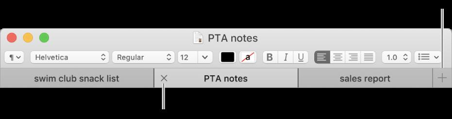 「文字編輯」視窗,分頁列中有三個分頁,位於格式列下方。一個分頁顯示「關閉」按鈕。「加入」按鈕位於分頁列的最右側。