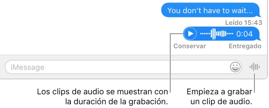 """Una conversación en la ventana de Mensajes mostrando el botón """"Enviar mensaje de voz"""" junto al campo de texto en la parte inferior de la ventana."""