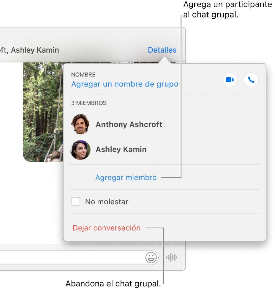 """Vista de Detalles, que aparece después de hacer clic en Detalles en una conversación grupal. """"Agregar miembro"""" aparece debajo del nombre del último participante en la lista y """"Abandonar esta conversación"""" se sitúa en la parte inferior del diálogo."""