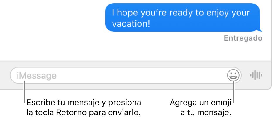Una conversación en la ventana de Mensajes con el campo de texto situado en la parte inferior de la ventana.