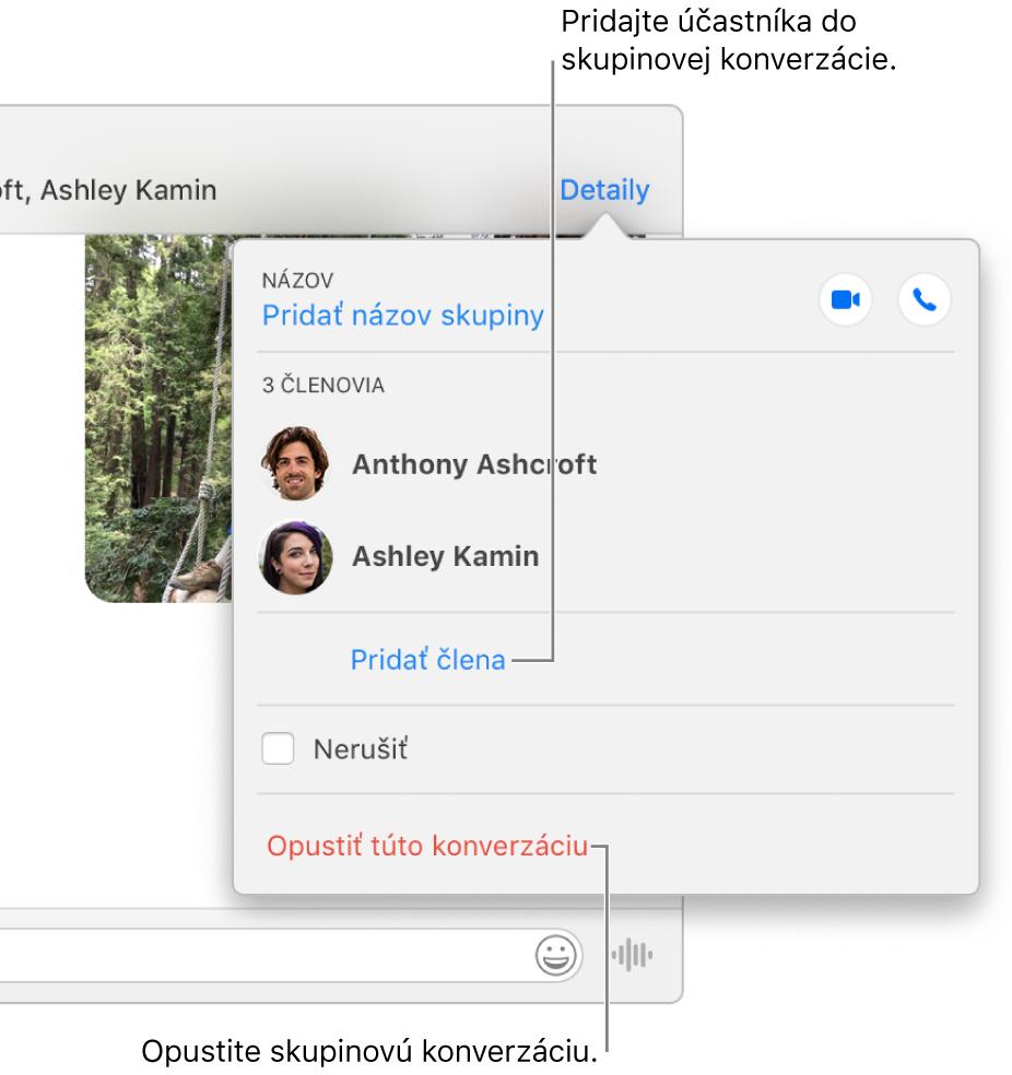 Zobrazenie Detaily, ktoré sa zobrazí po kliknutí na položku Detaily vskupinovej konverzácii. Pod menom posledného účastníka vzozname sa zobrazí možnosť Pridať člena anaspodku dialógového okna sa zobrazí možnosť Opustiť túto konverzáciu.