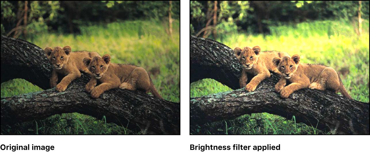 """Canvas mit dem Effekt des Filters """"Helligkeit"""""""